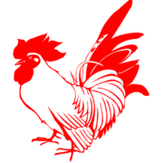 Chinese Idioms - Chicken