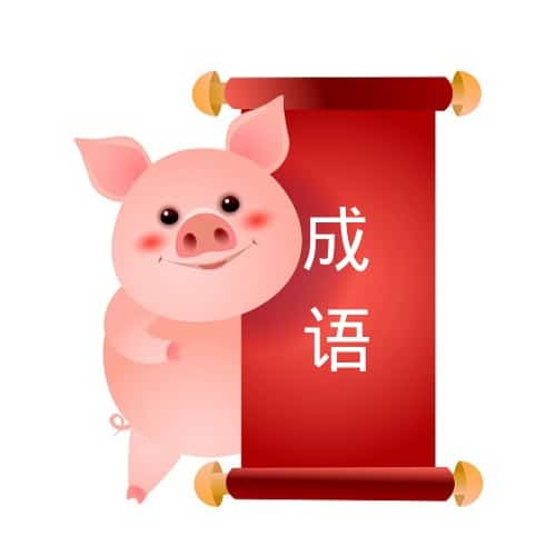 Chinese Proverbs About Pigs