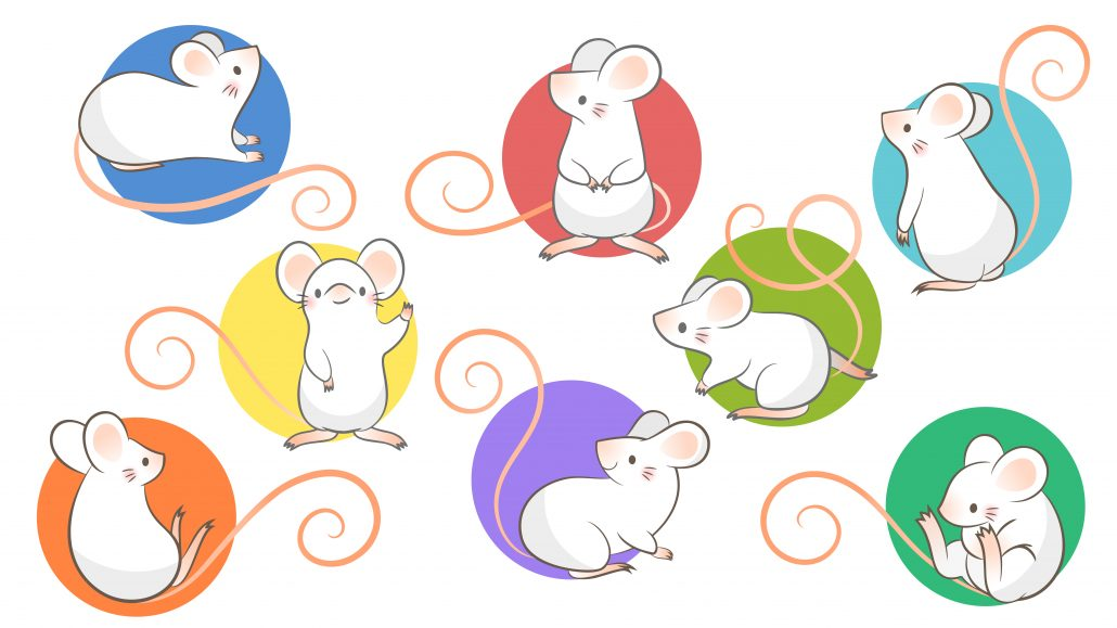 Chinese Idioms About Rats